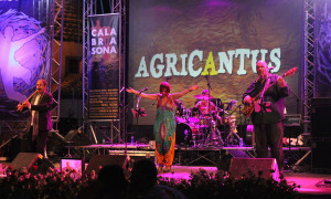Agricantus Caulonia 2013-020