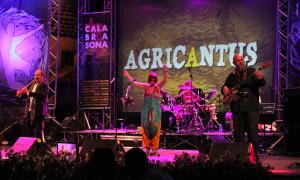 Agricantus Caulonia 2013-021
